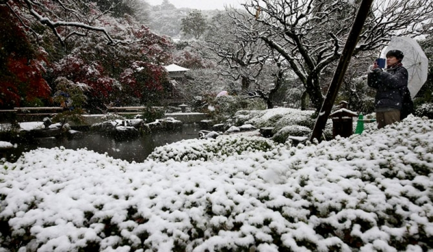 Tokyo gets first November snowfall in 54 yrs.