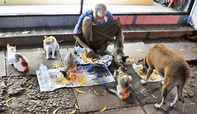 Beggars, stray dogs hamper development