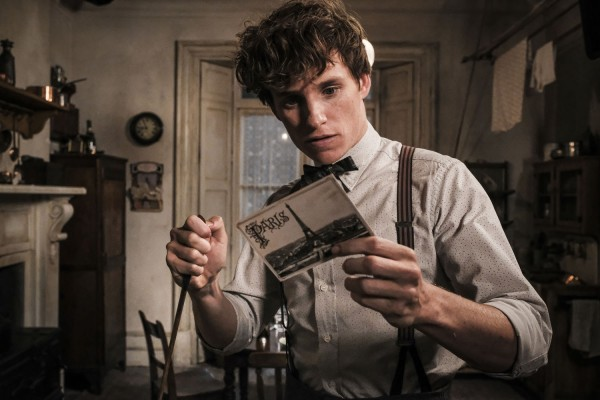 fantastic beasts the crimes of grindelwald eddie redmayne 600x400