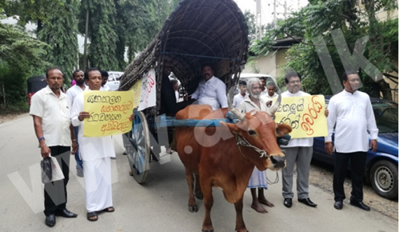 Wayamba MP's attend sessions in bullock carts