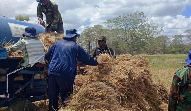 30 pc of harvest damaged by animals