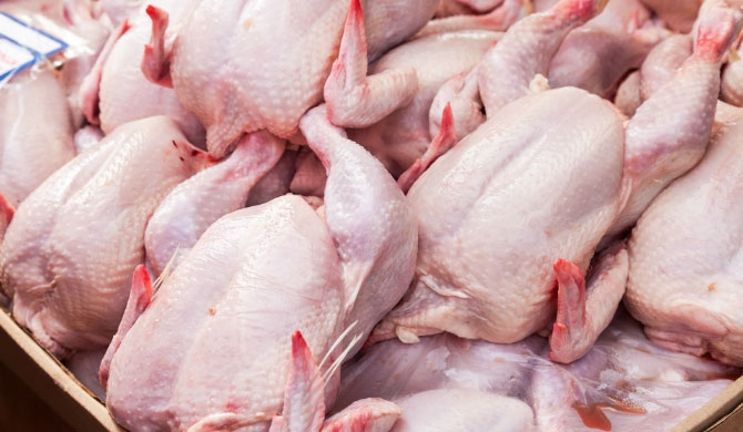 Price of broiler chicken slashed
