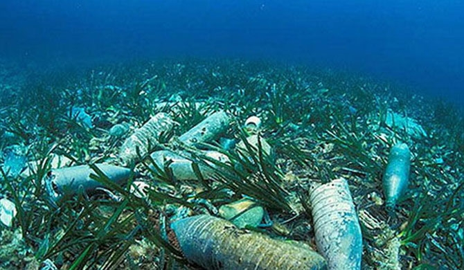 80% of Western Province sea bed polluted
