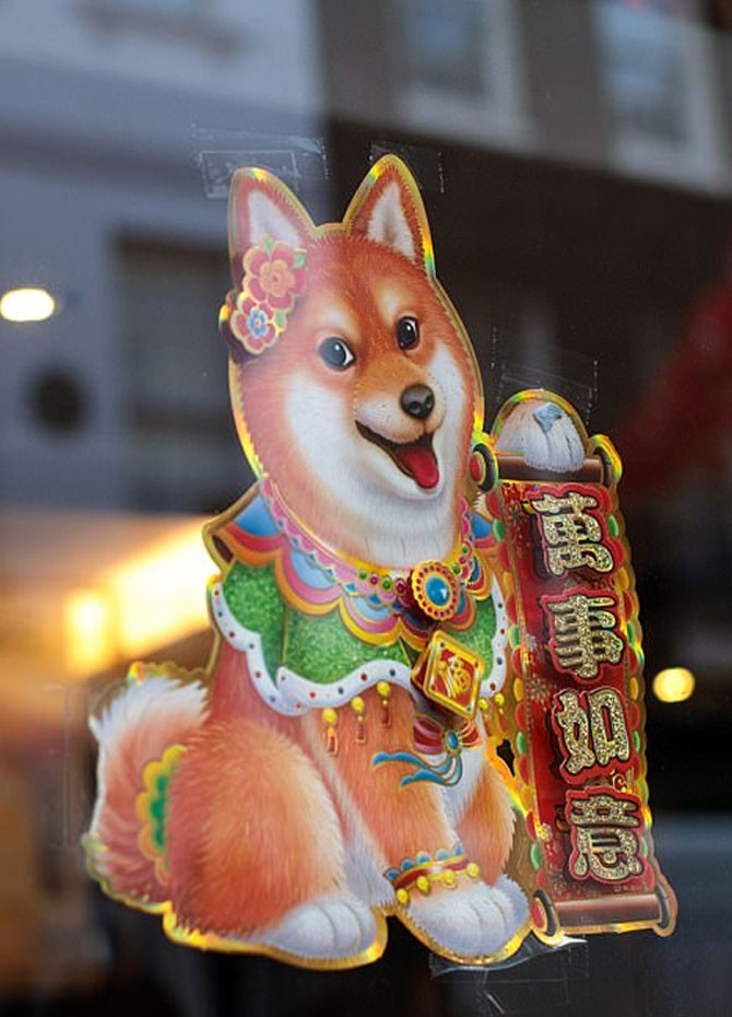 Year of the Dog celebrated (Pics)