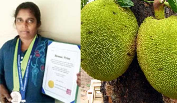 Korean award for local Jackfruit ice-cream