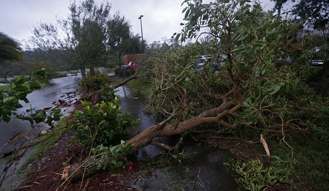 Irma hits mainland Florida (Pics)