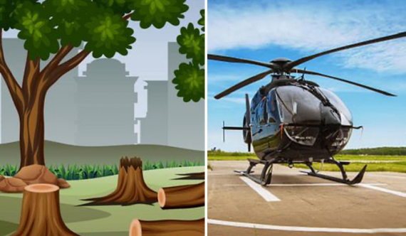 Kumbuk trees near Kataragama sacred site felled over obstruction to helicopter pad? (Video)