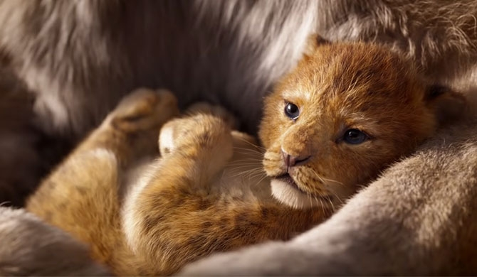 """The Lion King"" already roars past $100m"