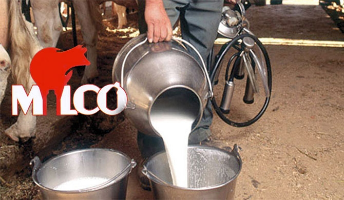 Milco owes nearly Rs. 700m to dairy farmers