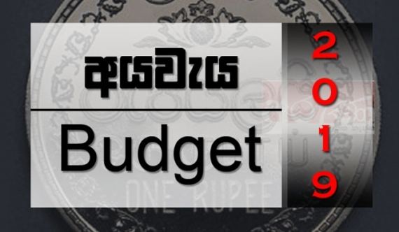 Budget 2019 passed in Parliament