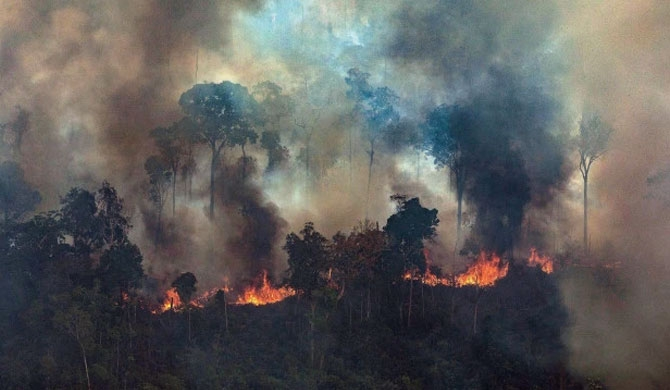 G7 leaders nearing agreement to fight Amazon fires