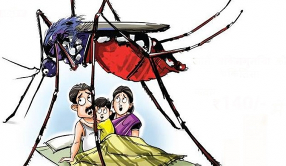 3 centres to receive dengue-complaints