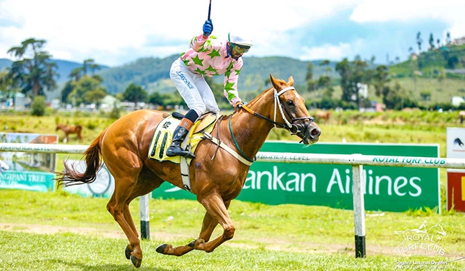 Alcazabar wins the Governor's Cup