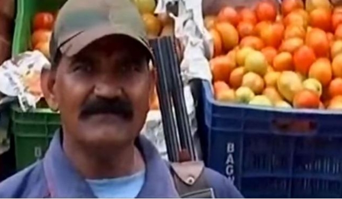 Tomatoes in India get armed guards