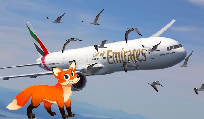 Emirates flight hits fox & bird at Mattala