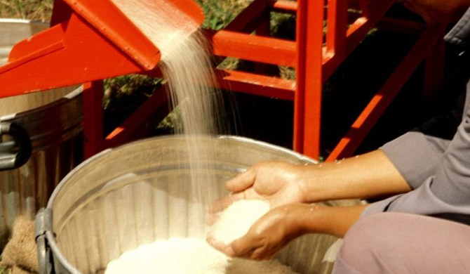 CAA issues price ceiling for rice