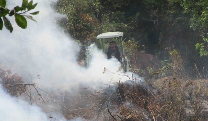 'Colonel' clears 8-acres in Sinharaja (Pics)