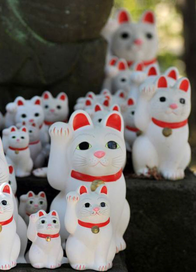Where the waving cat was born (Pics)