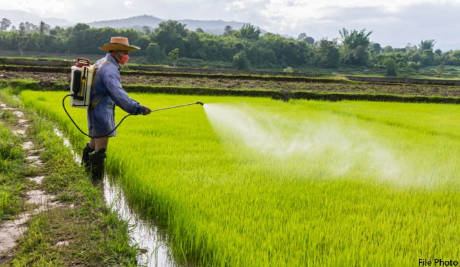 Agri. dept issues warning on herbicides