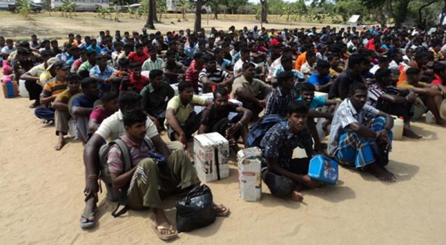 Number of LTTE cadres in custody revealed