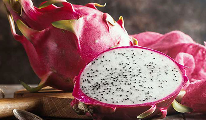 Indian state Gujarat renames dragon fruit