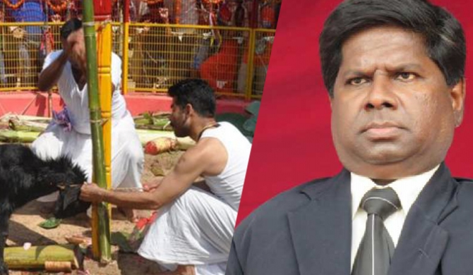 Animal sacrifices banned at kovils in Jaffna